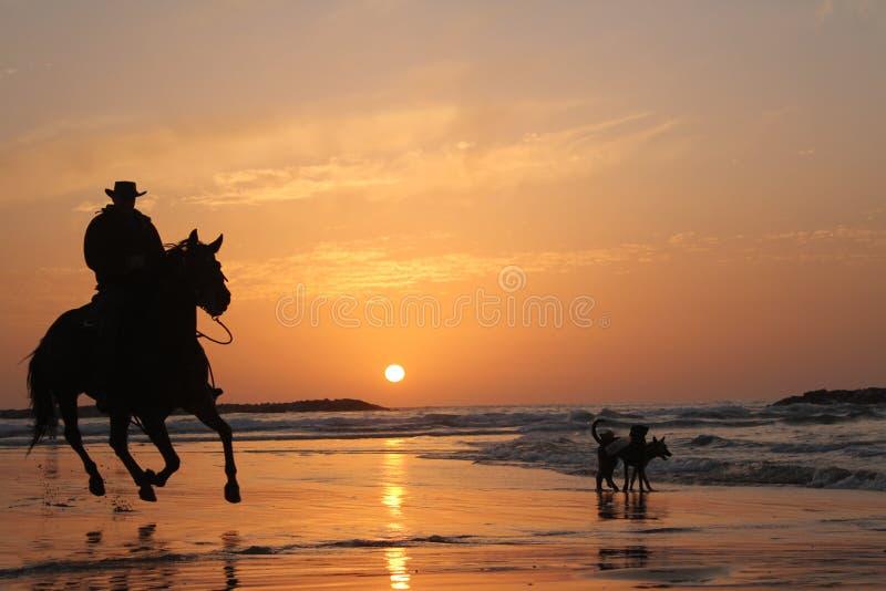 Équitation de cavalier photographie stock