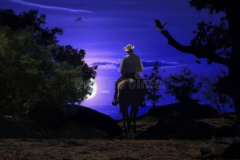 Équitation de cowboy sur un cheval VI. image stock