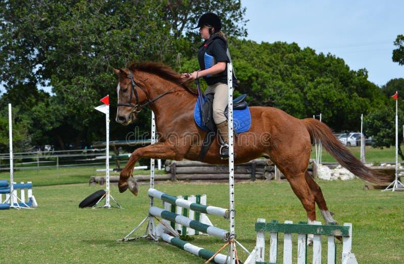 Équitation de dos de cheval de fille image stock