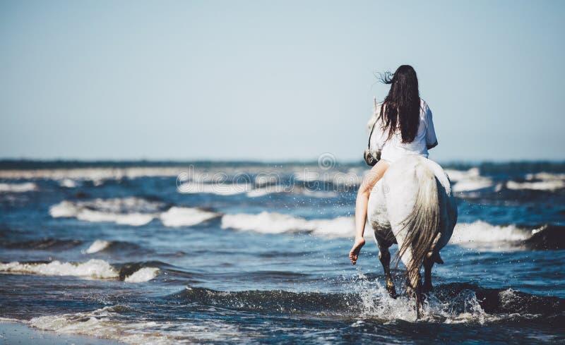 Équitation de fille sur le cheval blanc en mer photo stock