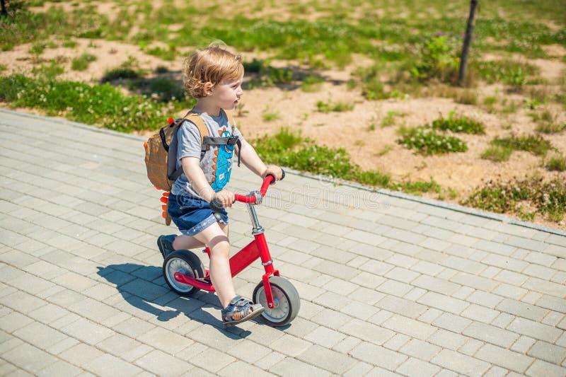 Équitation de garçon d'enfant en bas âge sur le vélo d'équilibre en parc d'été photos stock
