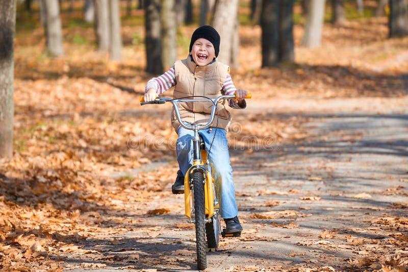 Équitation de garçon d'enfant sur la bicyclette en parc d'automne, jour ensoleillé lumineux, feuilles tombées sur le fond photos stock