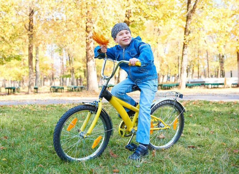 Équitation de garçon sur la bicyclette en parc d'automne, jour ensoleillé lumineux, feuilles tombées sur le fond image stock