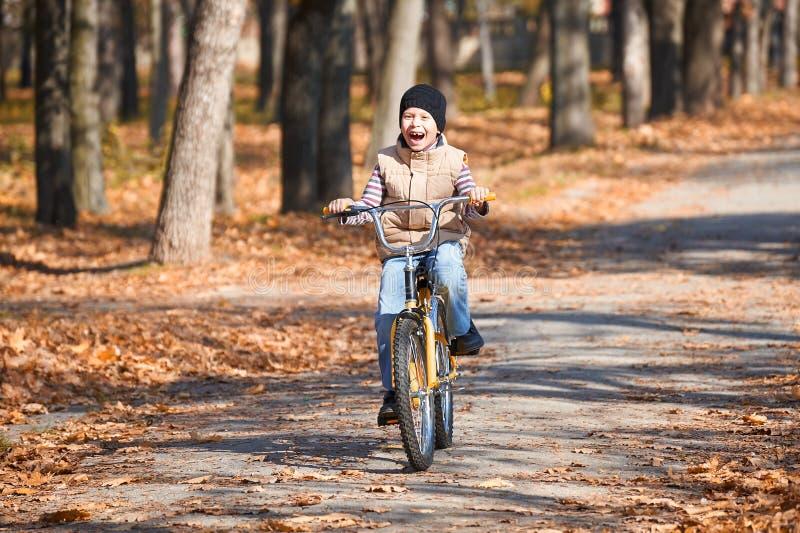 Équitation de garçon sur la bicyclette, parc de ville d'automne, jour ensoleillé lumineux, feuilles tombées sur le fond photographie stock libre de droits