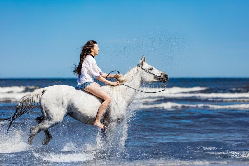 Équitation de jeune femme sur le cheval blanc par l'océan photo libre de droits