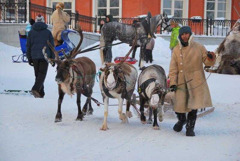 Équitation de renne en parc photos stock