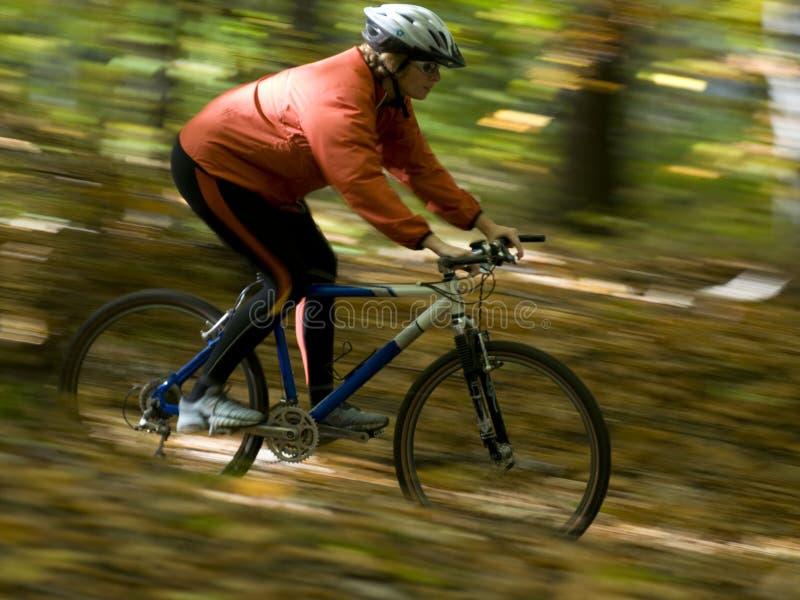 Équitation de vélo d'automne image stock