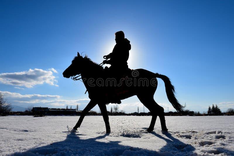 équitation, sortie et visite touristique images libres de droits