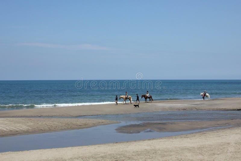 Équitation sur la plage de Bali photos stock