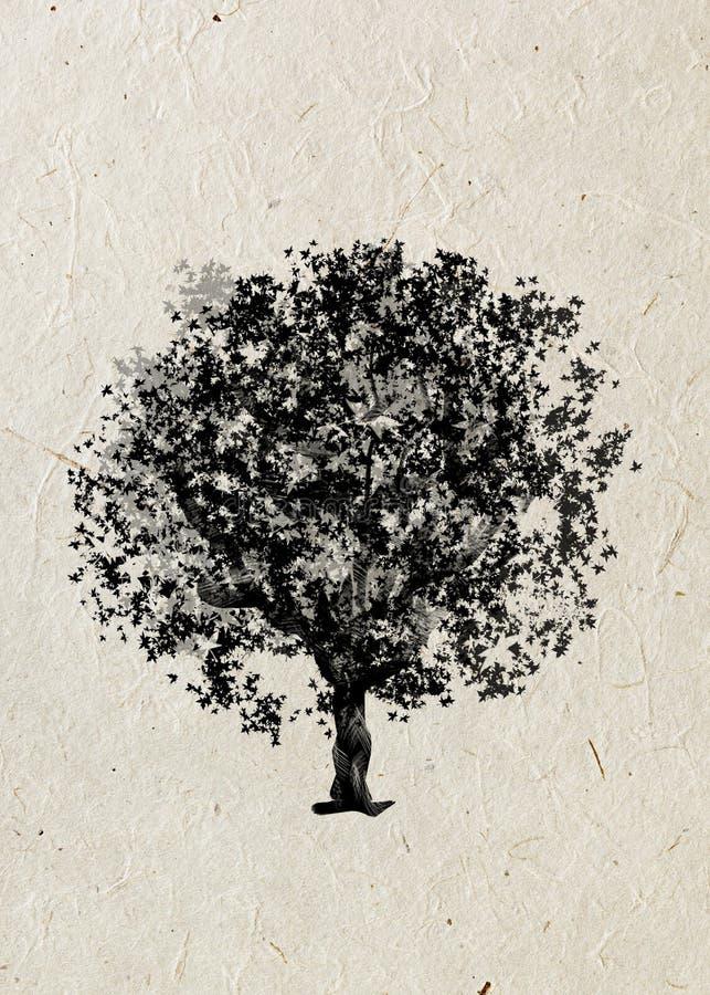 Érable d'arbre de dessin sur un papier de riz beige Silhouette noire sur un papier de riz beige illustration stock