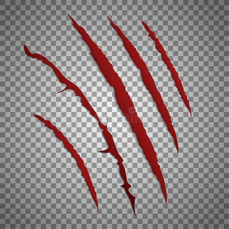 Éraflure de barre oblique réglée sur le fond transparent Vecteur rayant les marques rouges de griffe de bête illustration libre de droits