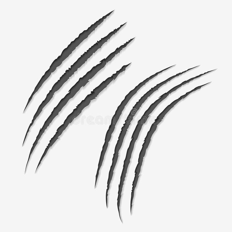Éraflures de griffes sur le fond blanc Éraflure laissée par griffé illustration libre de droits