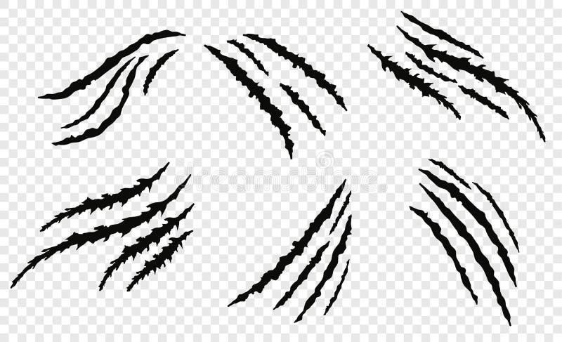 Éraflures de vecror de griffe illustration de vecteur
