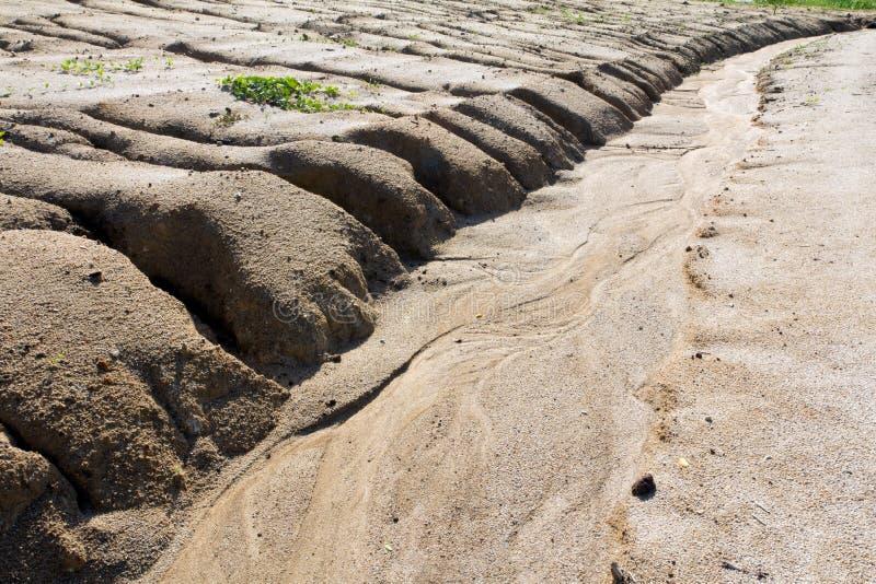 Érosion du sol à aboutir de surpâturage photos libres de droits