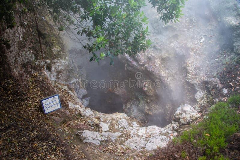 Éruption volcanique de vapeur chaude dans Furnas, île de Miguel de sao, archipel des Açores photo stock