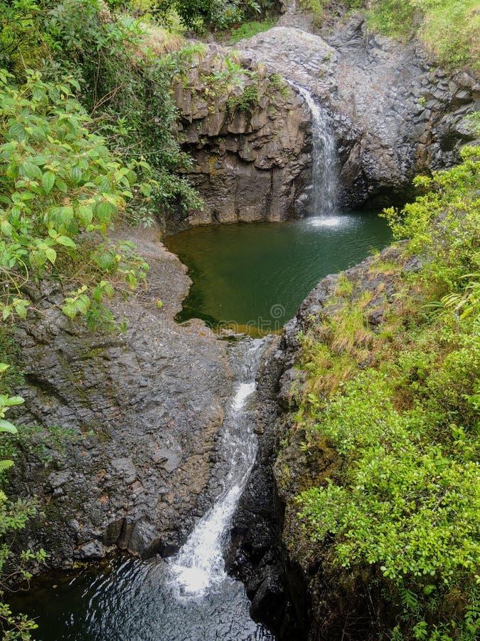 Éstas son cascadas con gradas a lo largo de una pista de senderismo en Maui cerca de las 7 piscinas sagradas que llevan a los bos foto de archivo libre de regalías