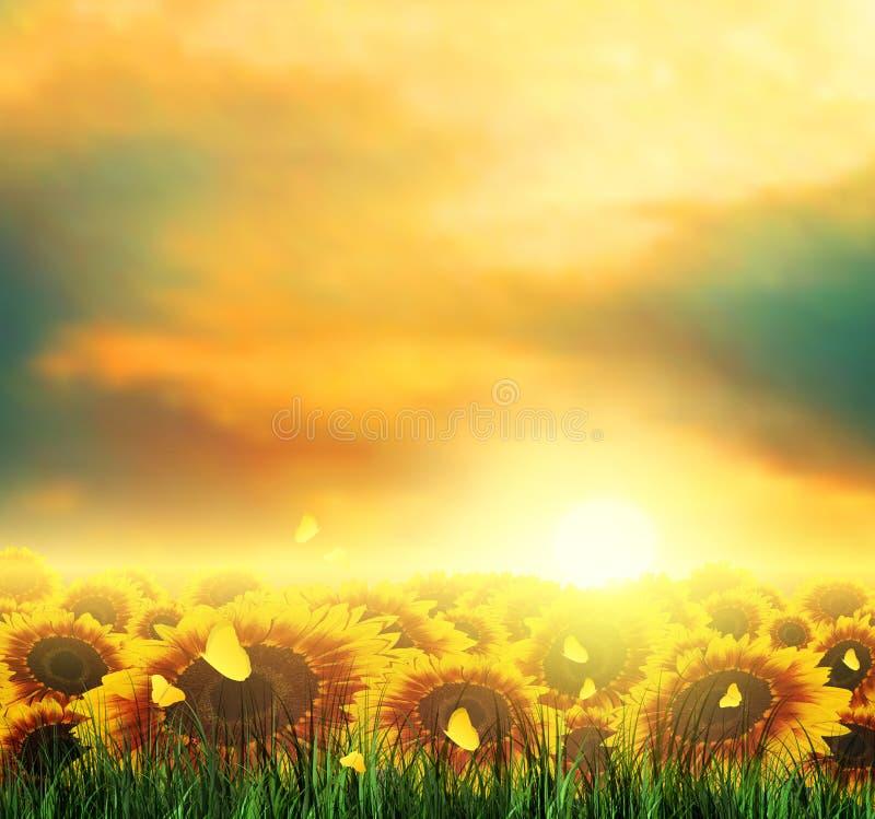 Été, champ, ciel, Sun, coucher du soleil, herbe, tournesols, papillons illustration de vecteur