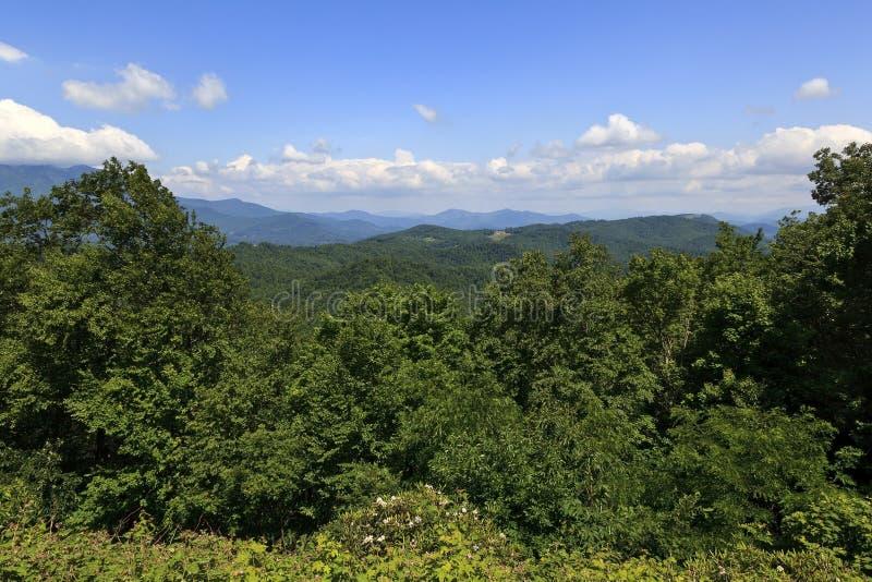 Été dans Carolina Mountains du nord photos stock