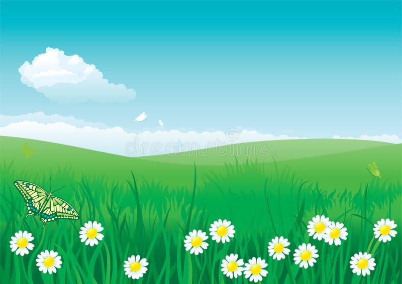 Été de fleur illustration de vecteur