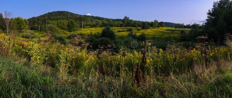 Été de montagnes du Vermont photos libres de droits
