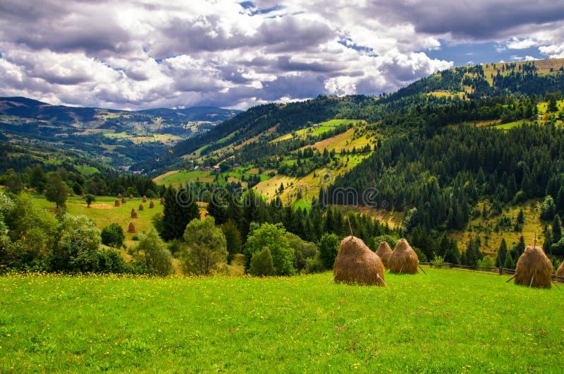 Été en Roumanie image stock