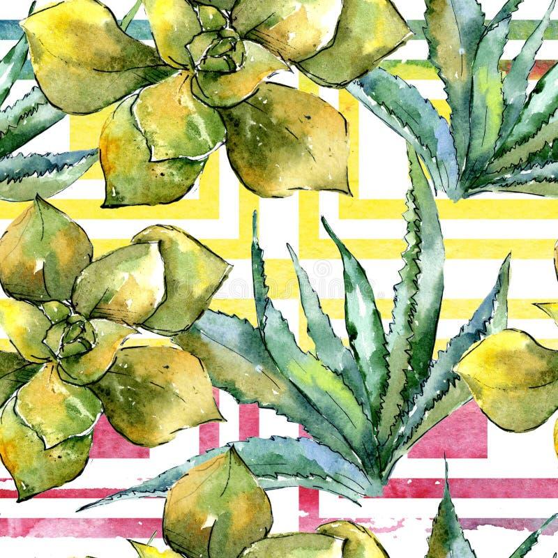 Été exotique de Hawaïen de plante tropicale L'arbre de plage d'usine laisse à jungle le succulent botanique Modèle sans couture d illustration libre de droits