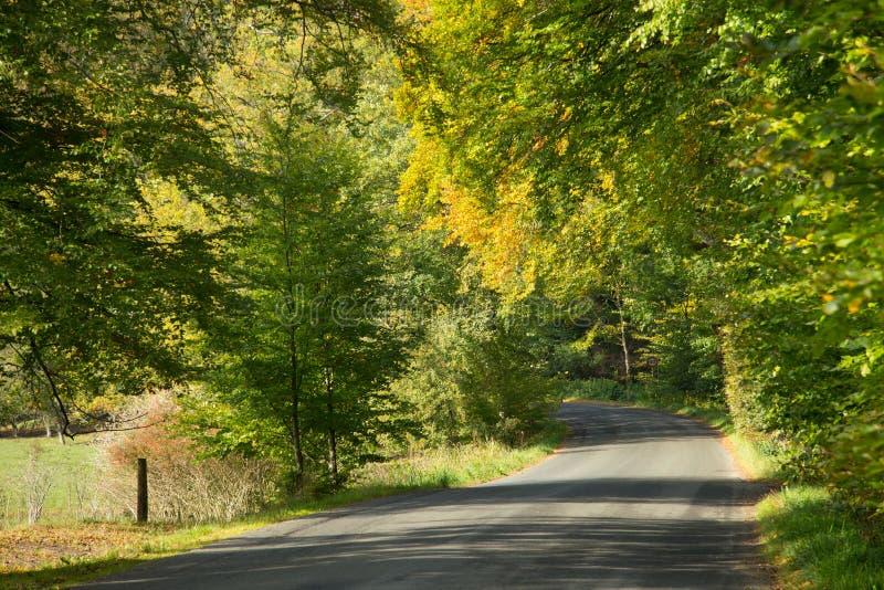 Download Été Indien De La Saint-Martin Photo stock - Image du novembre, fond: 45354640