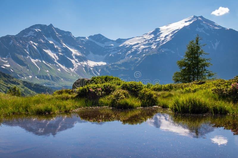 Été-jour dans les montagnes photo libre de droits