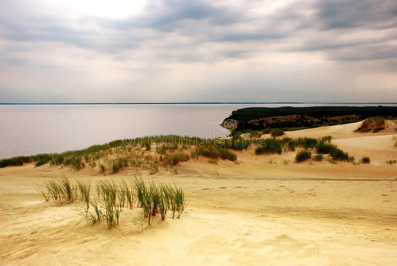 Été sur la plage image stock