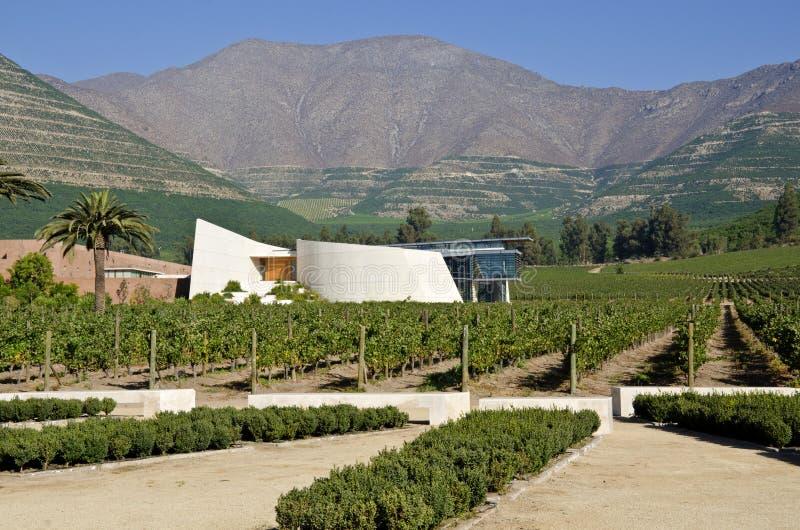 Établissement vinicole et vigne en vallée Chili #6 d'Aconcagua images libres de droits