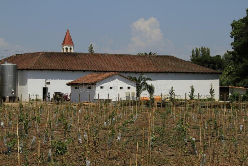 Établissement vinicole Santa Cruz Chile image libre de droits