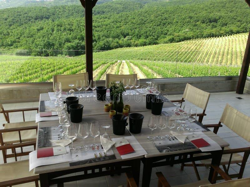 Établissement vinicole Xinomavro dans les vignobles Grèce image stock