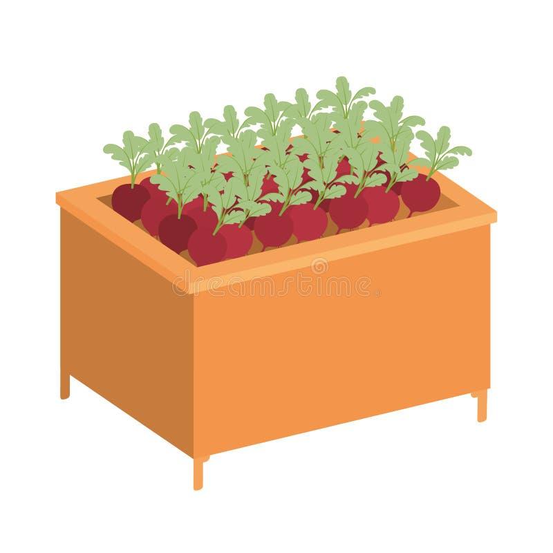 Étagère en bois avec l'icône d'isolement par légumes illustration de vecteur