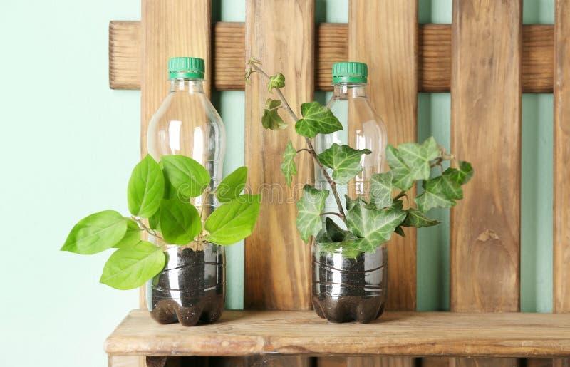 Étagère en bois avec les bouteilles en plastique utilisées comme récipient images libres de droits