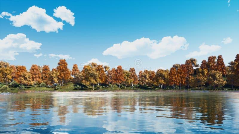 Étang calme de forêt avec les arbres colorés scéniques d'automne image stock