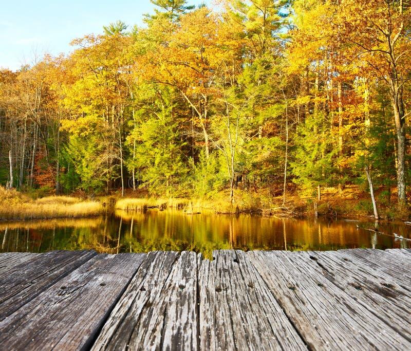 Étang dans la réserve forestière blanche de montagne, New Hampshire images libres de droits