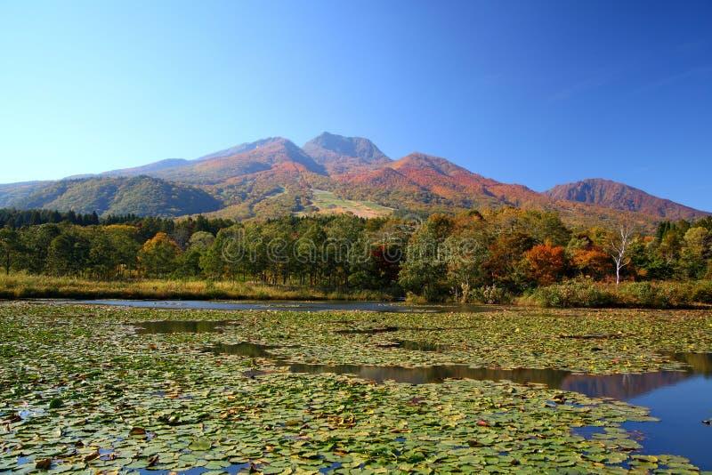 Étang de montagne et de lotus photographie stock