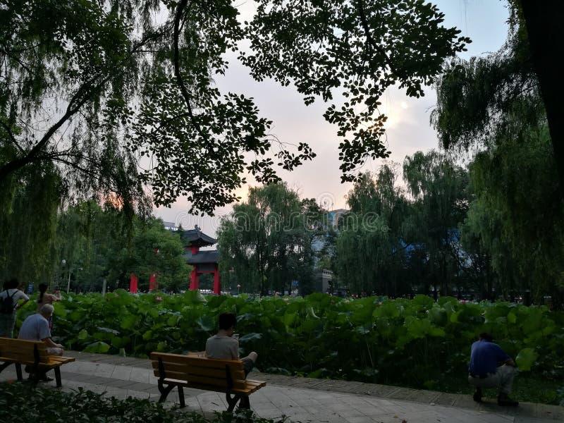 Étang de rustres d'université de Sichuan photos libres de droits