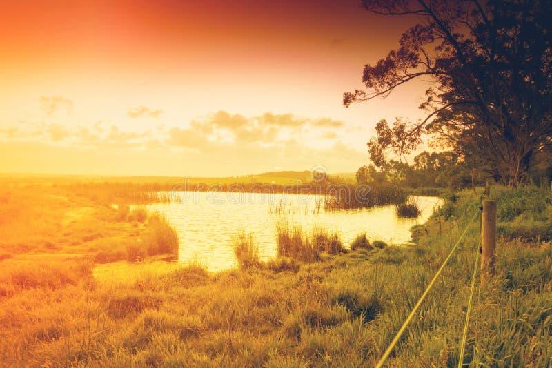 Étang de terres cultivables dans l'Australie photo libre de droits