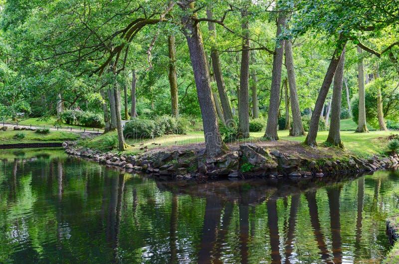 Étang en parc botanique, Palanga, Lithuanie images stock