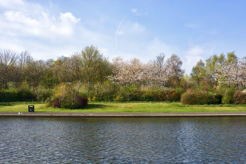 Étang en parc d'Alexandra dans le printemps, Glasgow, Ecosse, R-U images libres de droits