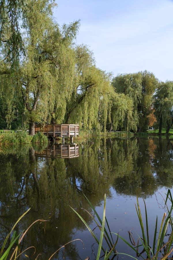 Étang et arbres au parc d'Orunia photos stock
