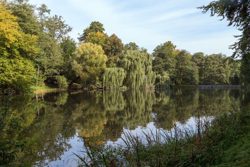Étang et arbres au parc d'Orunia photos libres de droits