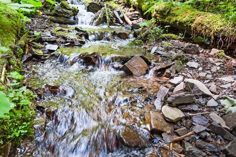 Étang et cascade verts de jardin image libre de droits