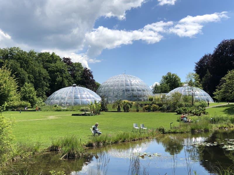Étang ou Teich et Tropenhaus - jardin botanique de l'université du der Universitaet Zurich de Zurich ou de Botanischer Garten images stock
