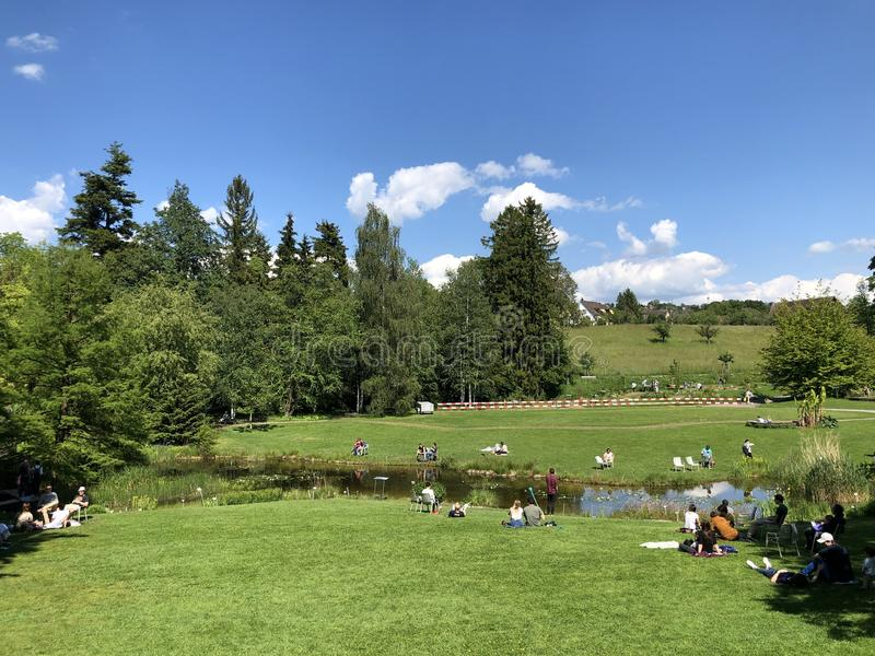 Étang ou Teich - jardin botanique de l'université du der Universitaet Zurich de Zurich ou de Botanischer Garten photo stock
