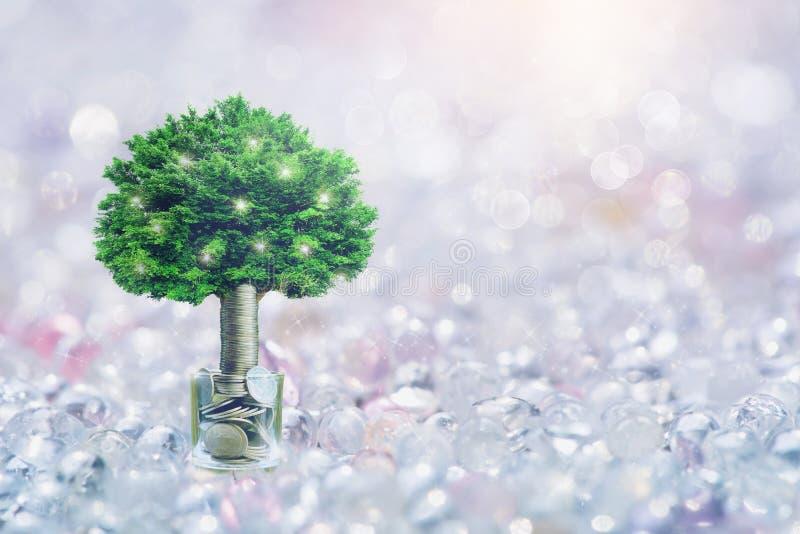 Étape des piles de pièces de monnaie avec l'arbre s'élevant sur le dessus, fond de Bokeh, pour s'enregistrer ou investissement po images stock