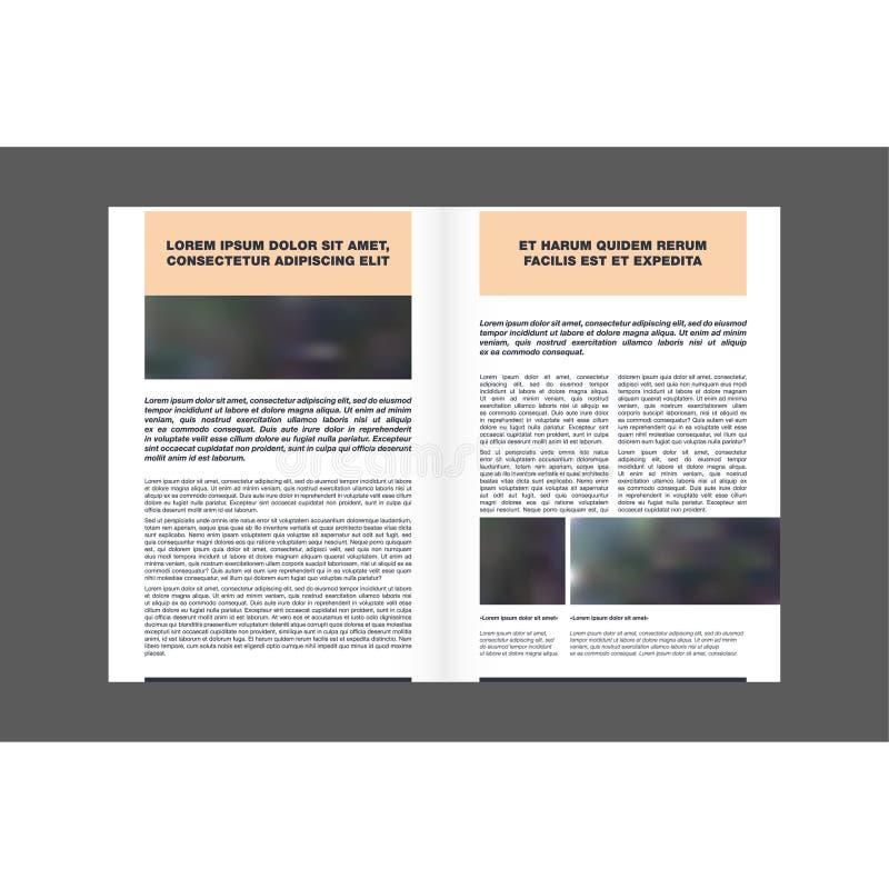 Étapes comment appliquer les serviettes faciales de nattes Illustration d'isolement illustration libre de droits