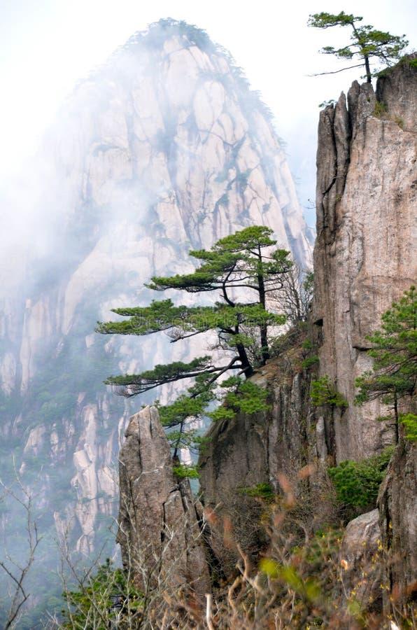 Étapes de montagne de Huangshan photographie stock