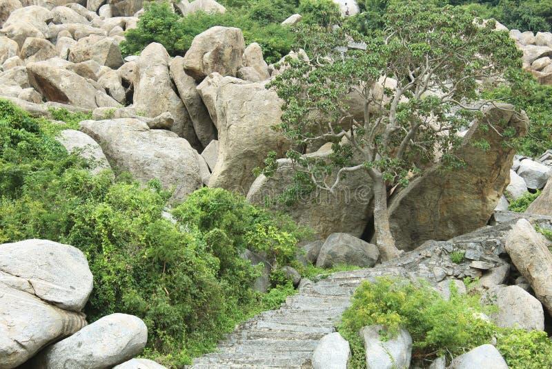 Étapes de paysage amenant une colline photos stock